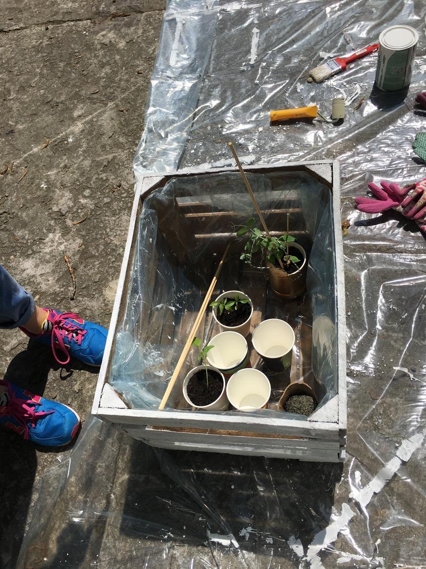 warsztaty roślinne i recyklingu