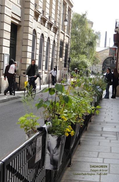 Miejskie ogródki w Paryżu jako przykład działań aktywizujących społeczność.