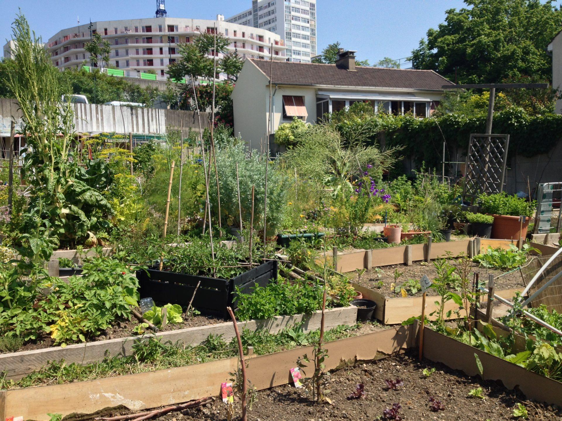 Miejskie ogródki w Paryżu