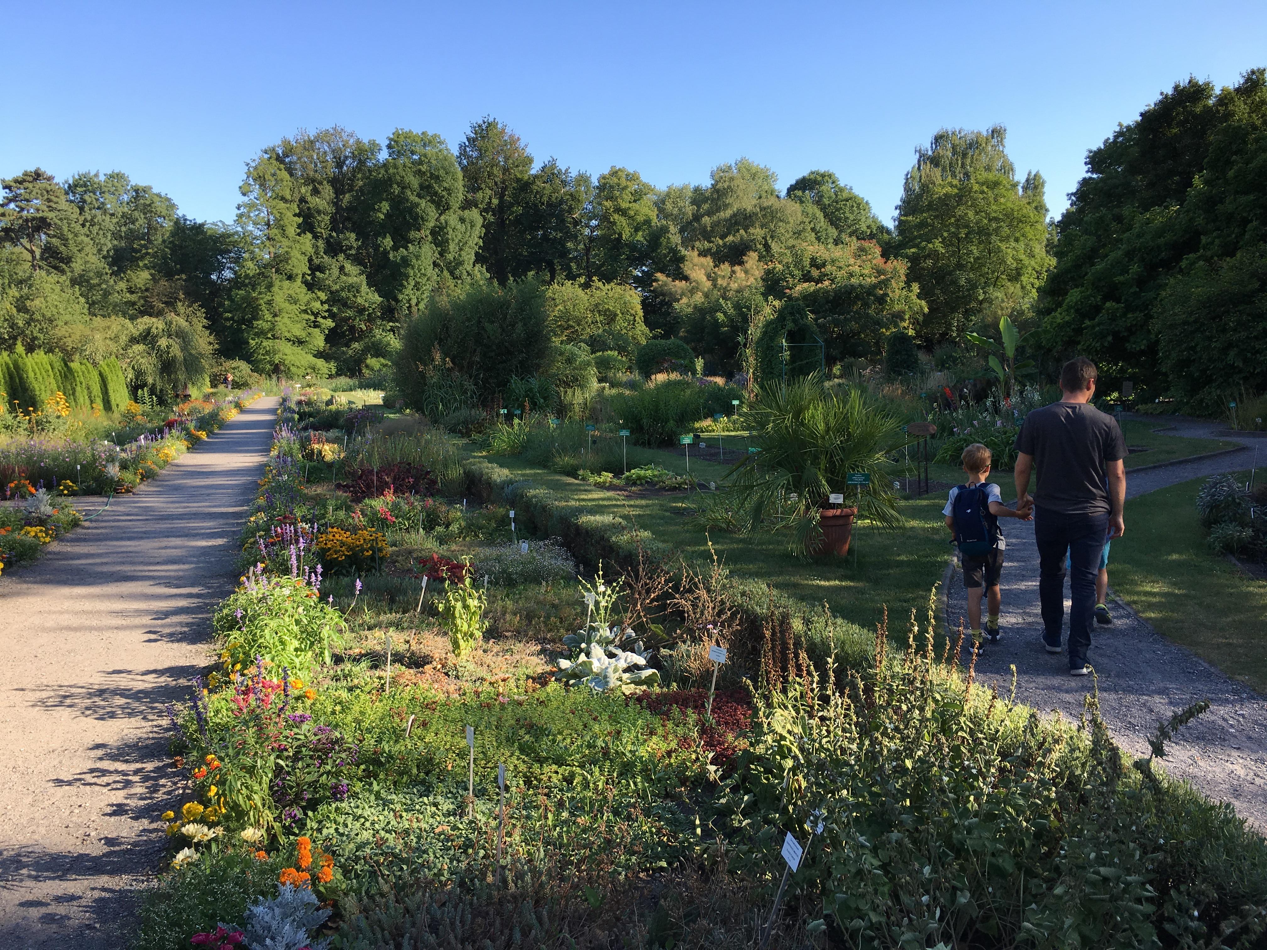 Alejki - ogród botaniczny w Krakowie