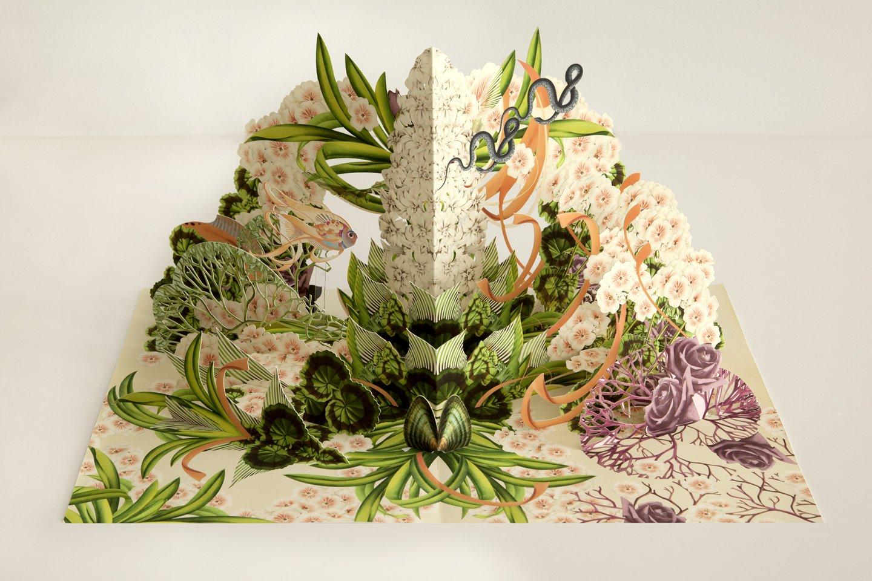 Nowa Botanika, trójwymiarowa książka