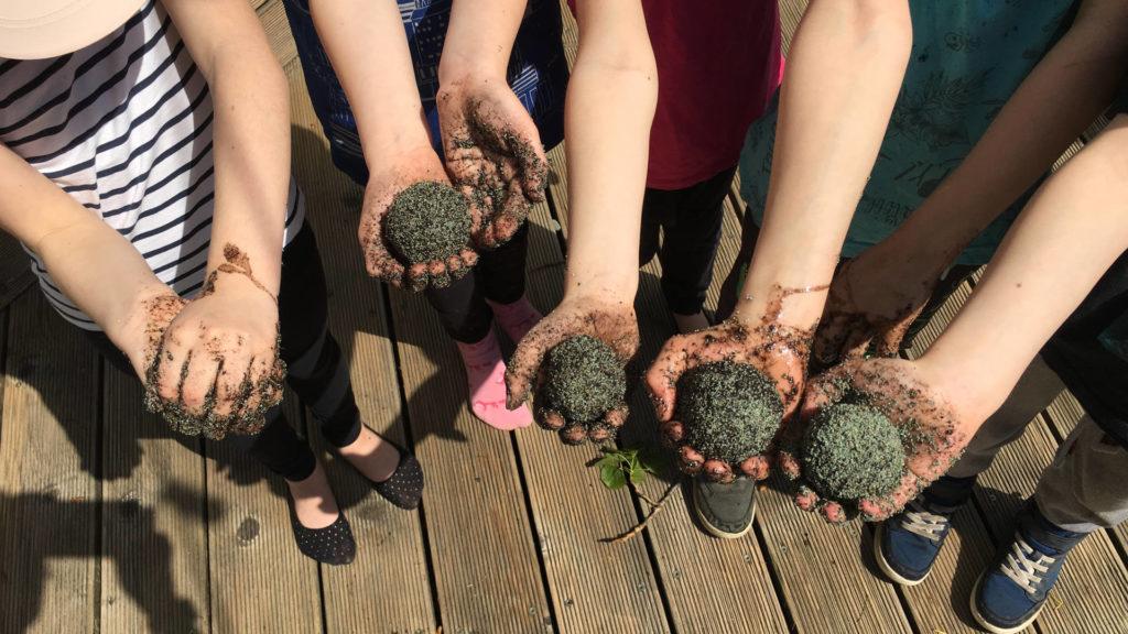 dzieci ręce kule nasienne