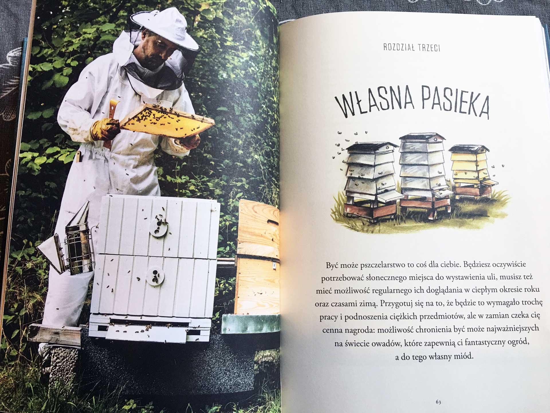 Pszczoły. Opowieść o pasji i miłości do najważniejszych owadów na świecie