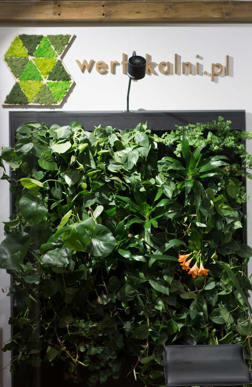 Targi Gardenia - zielona ściana