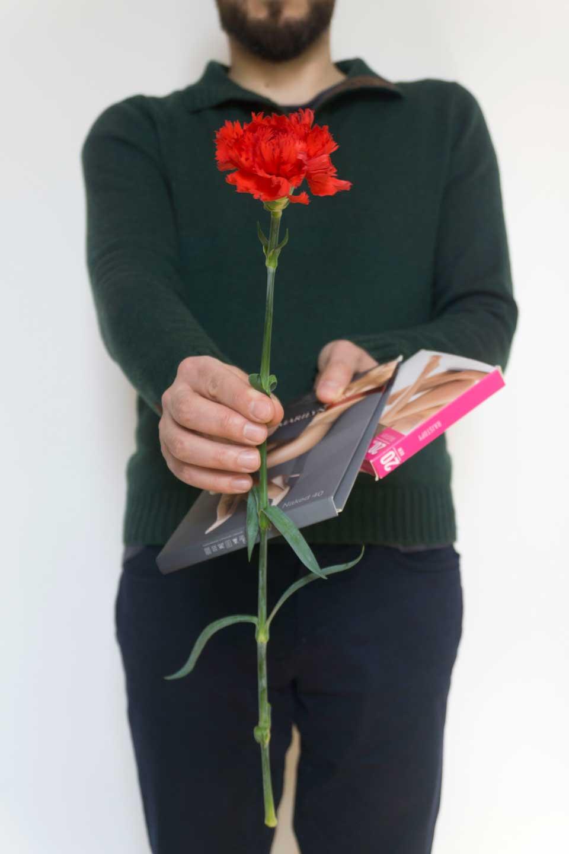 czwerwone gożdziki na dzień kobiet