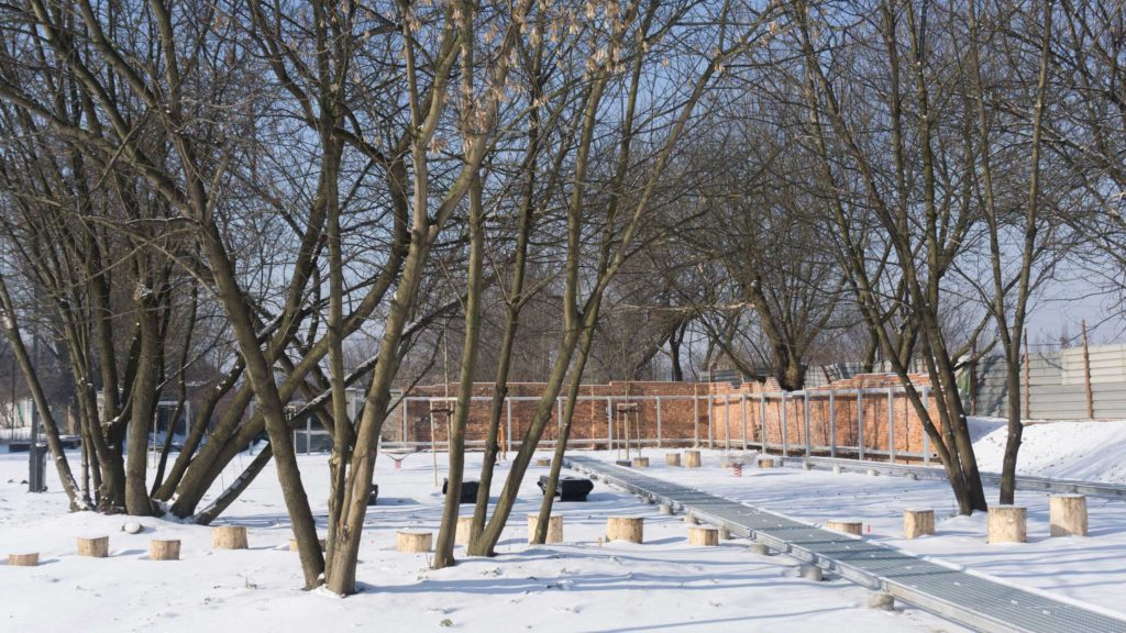 Park Stacja Wisła