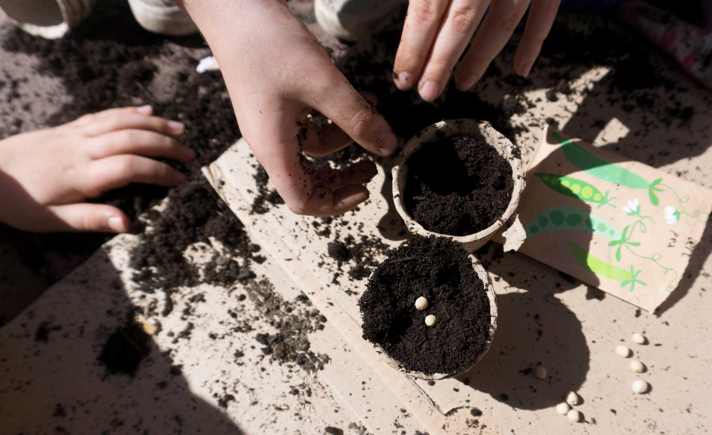 praca w ogrodzie z dziećmi, zestaw ogrodowy