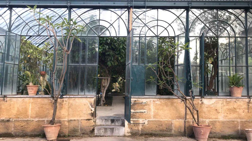 manifesta ogród botaniczny