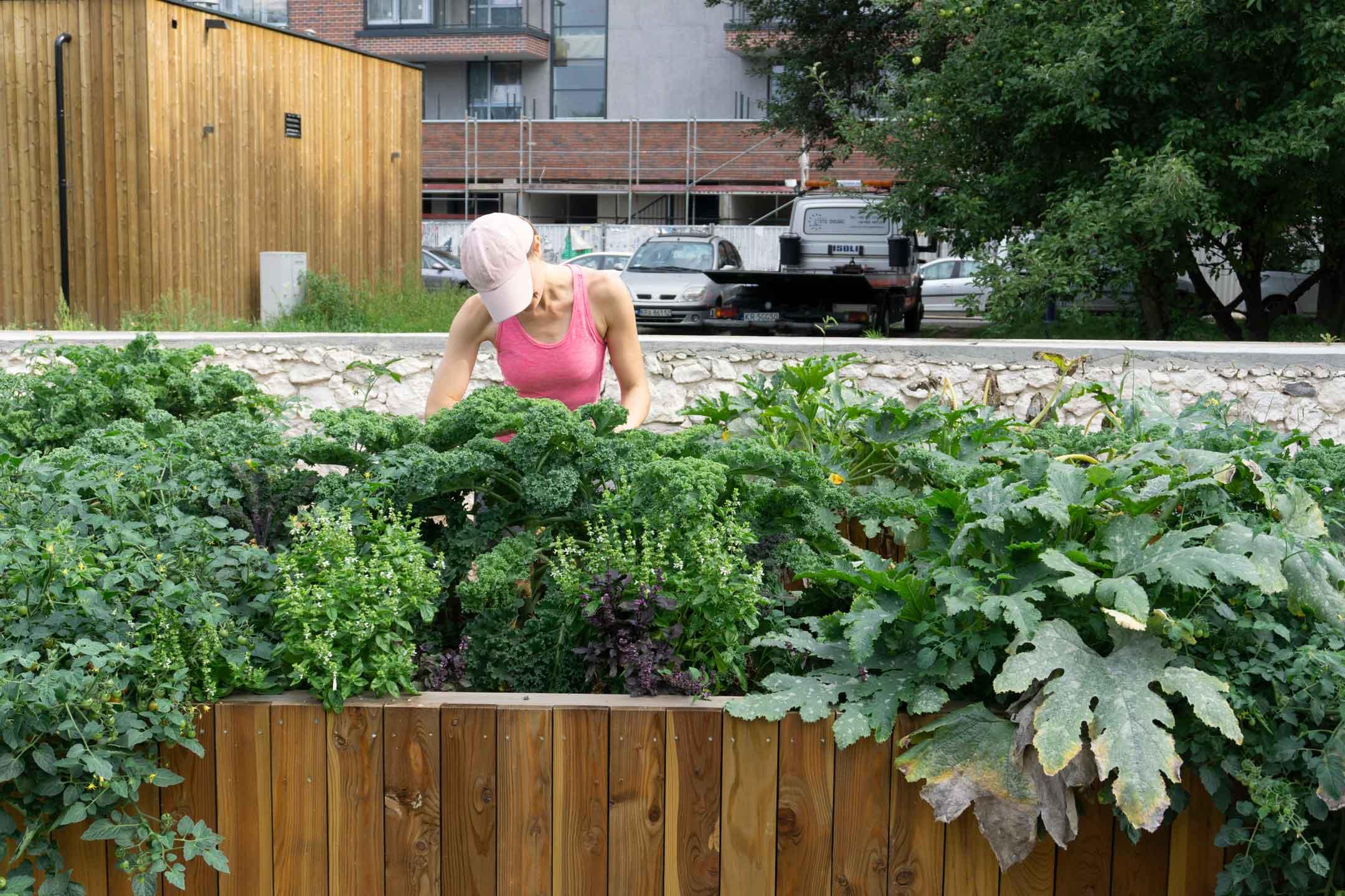 Ogród zamiast siłowni