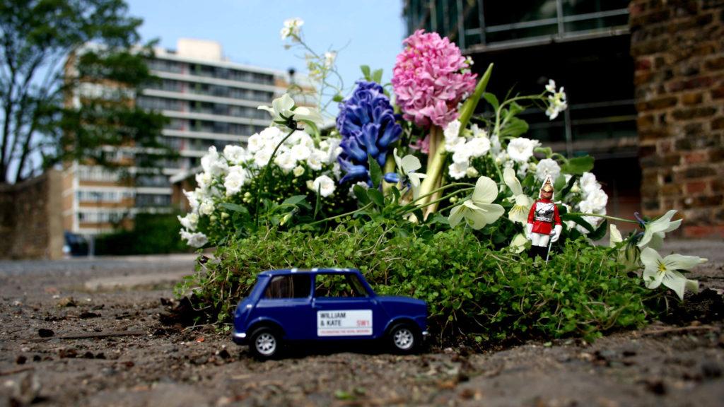 partyzantka ogrodnicza- The Pothole Gardener