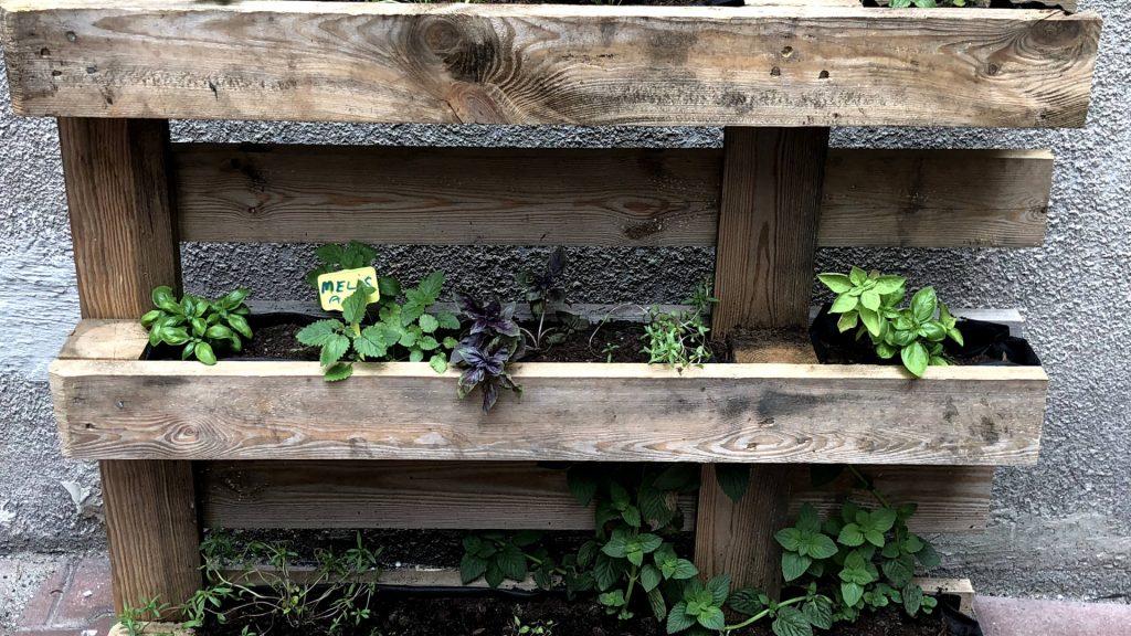 doniczka na zioła z palety