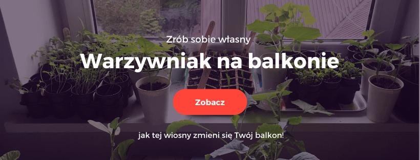 warzywniak na balkonie, kurs online