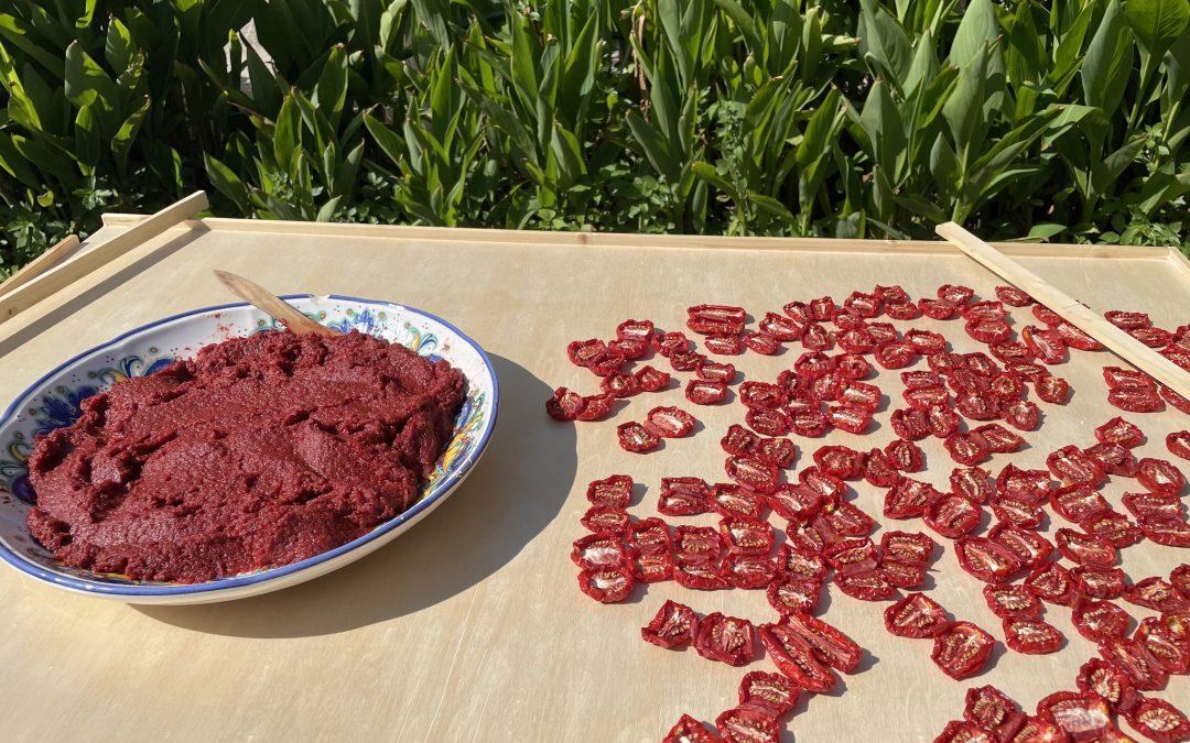 Suszone pomidory: przepis prosto z Sycylii