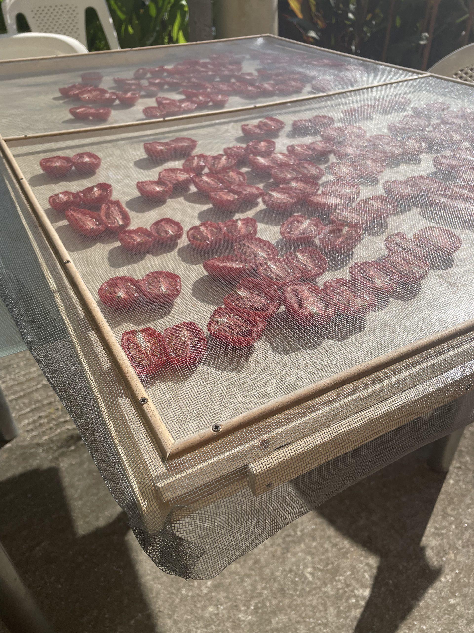 suszone pomidory wlasna produkcja